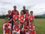 2016 Denis Nagle U10 Hurling tournament